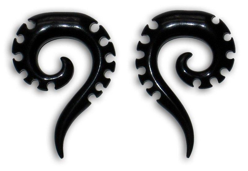 Ecarteur corne spirale fossile 241139